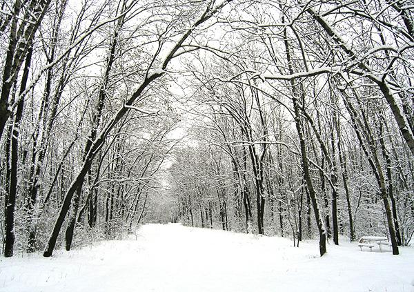 Февруари 2008